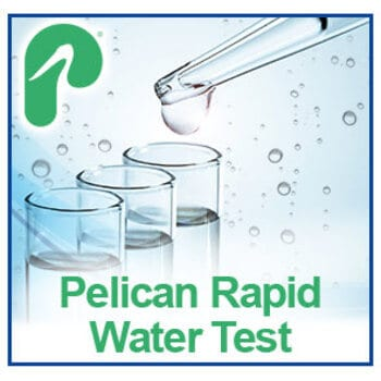 Rapid home water test